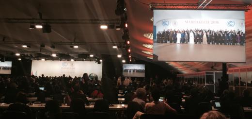 Immagine dalla plenaria della COP22